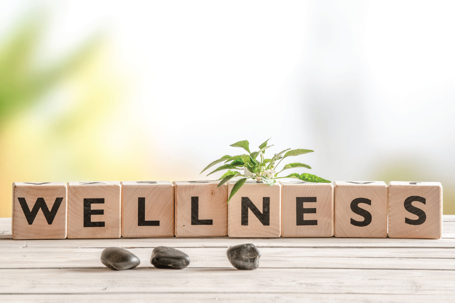 Health Optimization 101: How To Improve Your Level Of Wellness